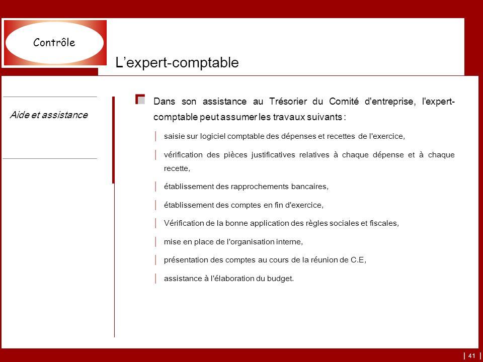 | 41 | Lexpert-comptable Dans son assistance au Trésorier du Comité d'entreprise, l'expert- comptable peut assumer les travaux suivants : saisie sur l