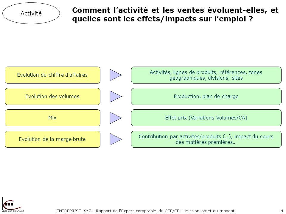 ENTREPRISE XYZ - Rapport de l Expert-comptable du CCE/CE – Mission objet du mandat14 Comment lactivité et les ventes évoluent-elles, et quelles sont les effets/impacts sur lemploi .