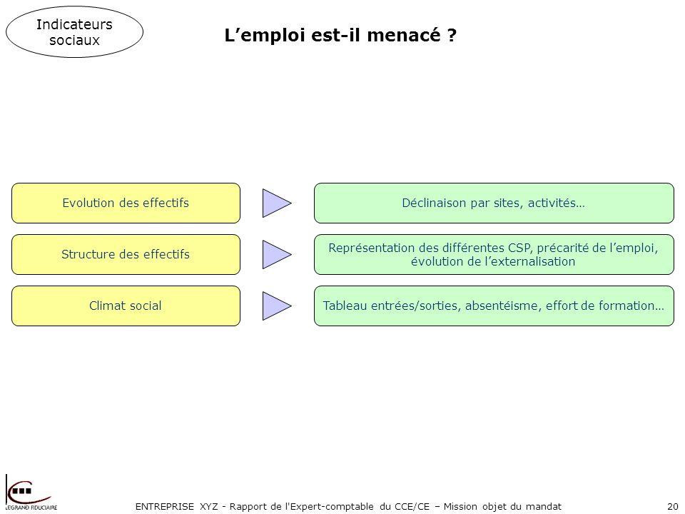 ENTREPRISE XYZ - Rapport de l Expert-comptable du CCE/CE – Mission objet du mandat20 Lemploi est-il menacé .