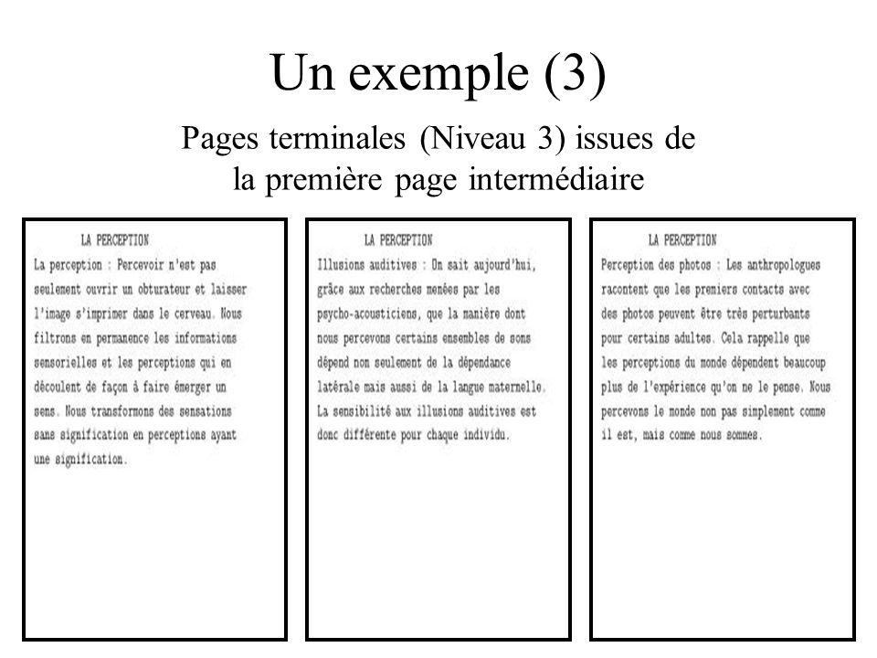 Un exemple (3) Pages terminales (Niveau 3) issues de la première page intermédiaire