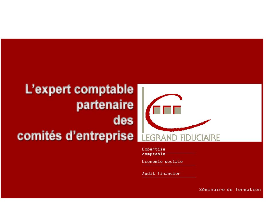 Audit financier Economie sociale Expertise comptable Séminaire de formation