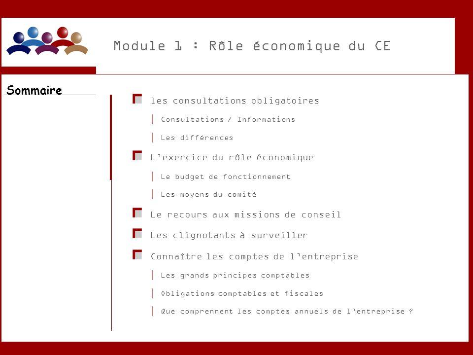 Module 1 : Rôle économique du CE les consultations obligatoires Consultations / Informations Les différences Lexercice du rôle économique Le budget de
