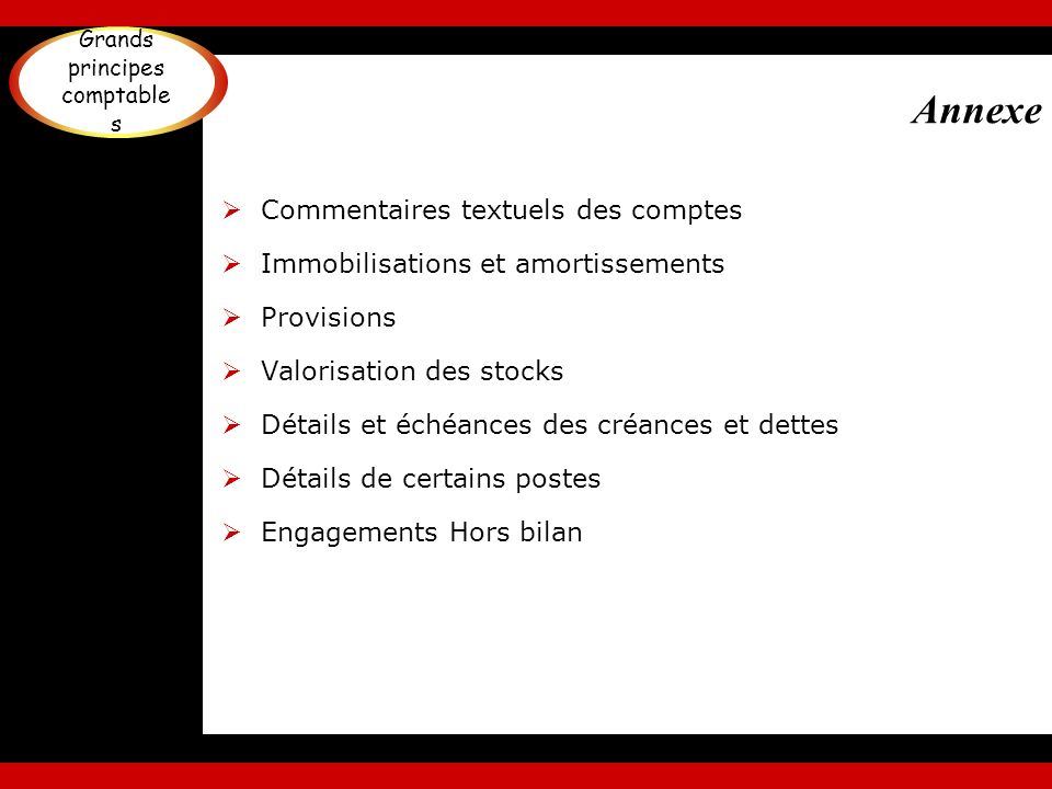 Annexe Commentaires textuels des comptes Immobilisations et amortissements Provisions Valorisation des stocks Détails et échéances des créances et det