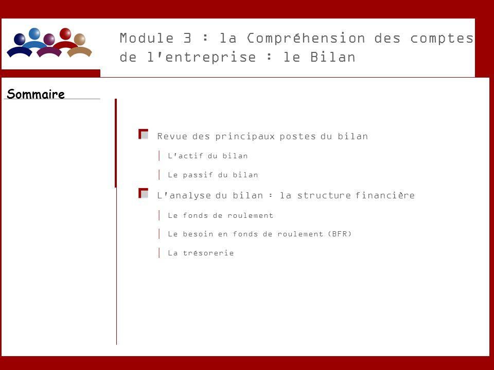 Module 3 : la Compréhension des comptes de l'entreprise : le Bilan Revue des principaux postes du bilan L'actif du bilan Le passif du bilan L'analyse