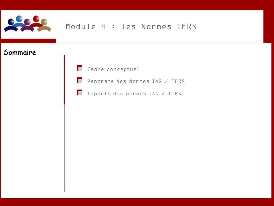 Module 4 : les Normes IFRS Cadre conceptuel Panorama des Normes IAS / IFRS Impacts des normes IAS / IFRS Sommaire
