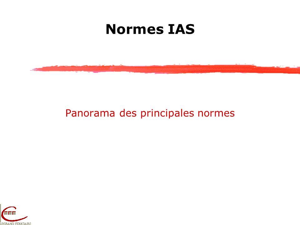 Normes IAS Panorama des principales normes
