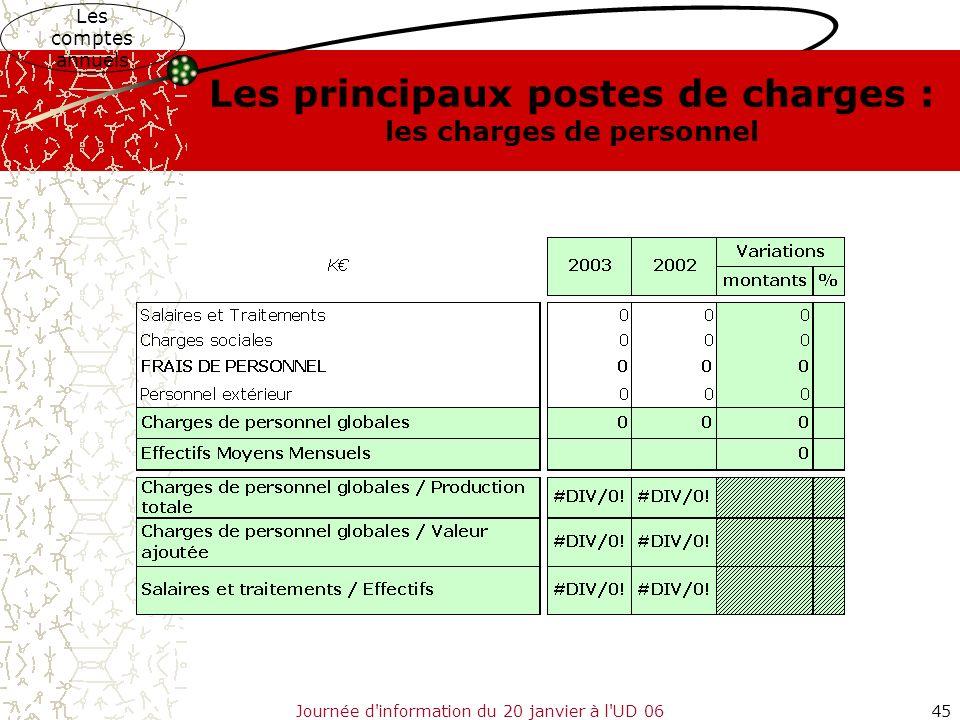 Journée d'information du 20 janvier à l'UD 0645 Les comptes annuels Les principaux postes de charges : les charges de personnel