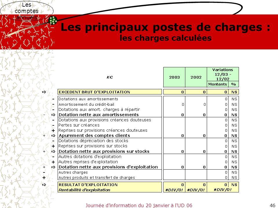 Journée d'information du 20 janvier à l'UD 0646 Les comptes annuels Les principaux postes de charges : les charges calculées