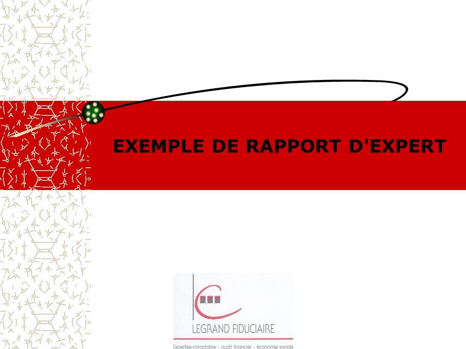 EXEMPLE DE RAPPORT D'EXPERT
