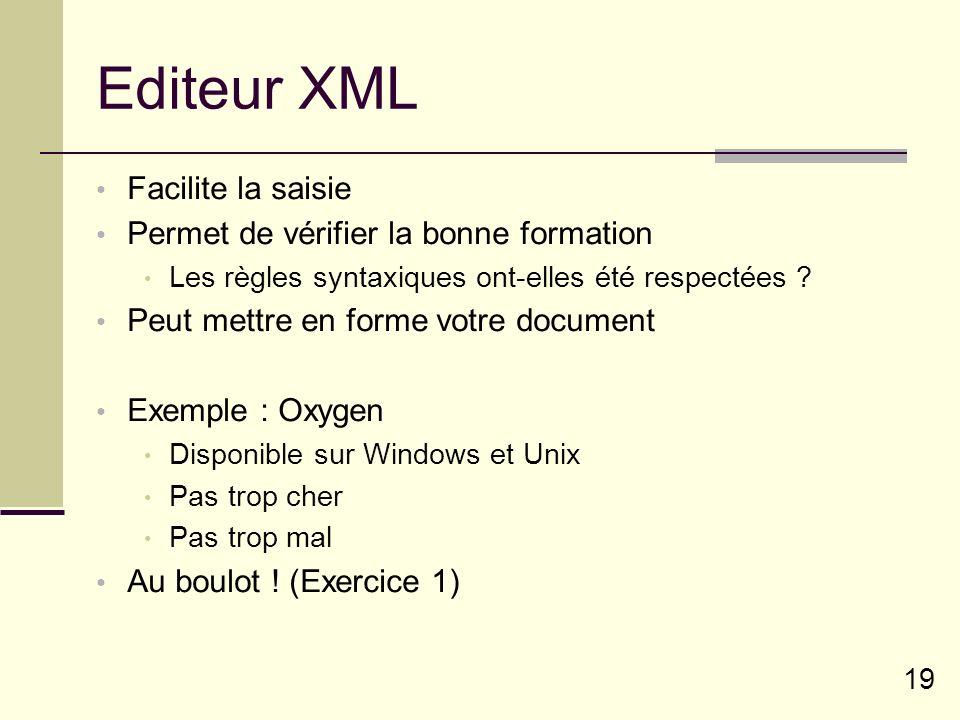 19 Editeur XML Facilite la saisie Permet de vérifier la bonne formation Les règles syntaxiques ont-elles été respectées .