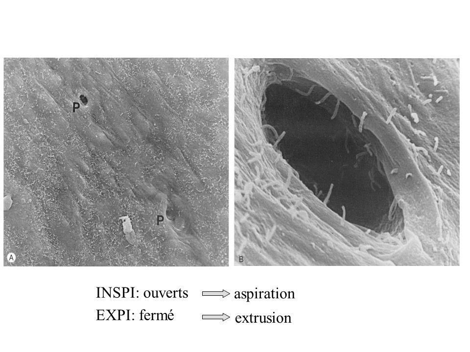 INSPI: ouverts EXPI: fermé aspiration extrusion