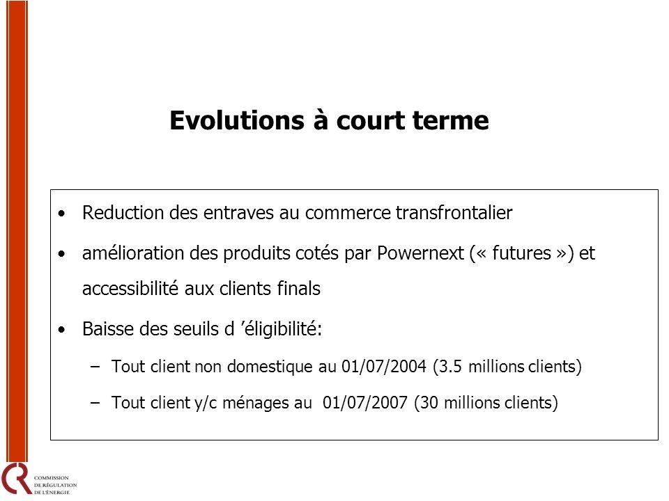 Evolutions à court terme Reduction des entraves au commerce transfrontalier amélioration des produits cotés par Powernext (« futures ») et accessibili