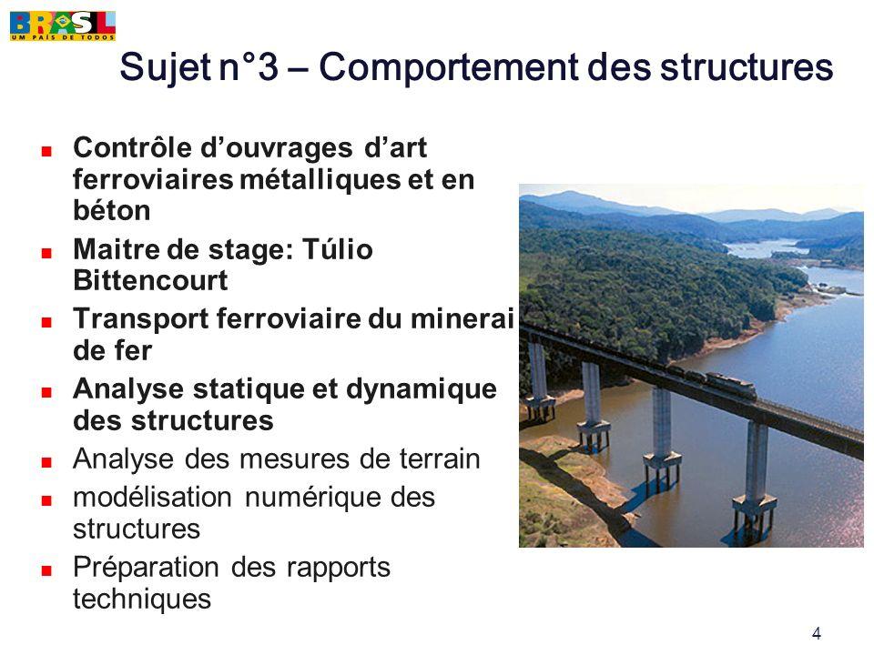 4 Sujet n°3 – Comportement des structures Contrôle douvrages dart ferroviaires métalliques et en béton Maitre de stage: Túlio Bittencourt Transport fe
