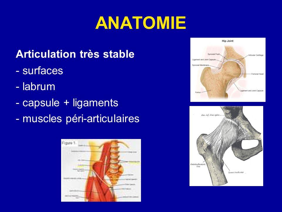 ANATOMIE Articulation très stable - surfaces - labrum - capsule + ligaments - muscles péri-articulaires