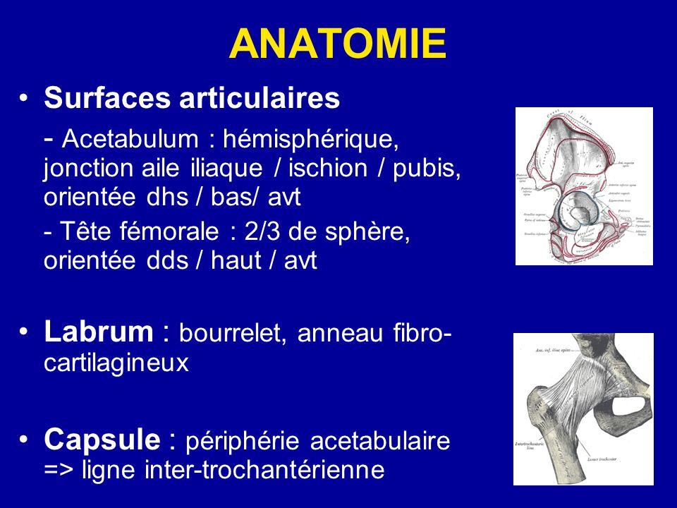 ANATOMIE Surfaces articulaires - Acetabulum : hémisphérique, jonction aile iliaque / ischion / pubis, orientée dhs / bas/ avt - Tête fémorale : 2/3 de sphère, orientée dds / haut / avt Labrum : bourrelet, anneau fibro- cartilagineux Capsule : périphérie acetabulaire => ligne inter-trochantérienne