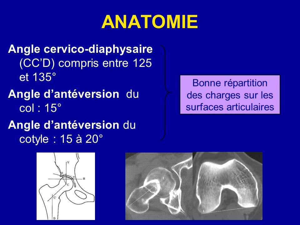 ANATOMIE Angle cervico-diaphysaire (CCD) compris entre 125 et 135° Angle dantéversion du col : 15° Angle dantéversion du cotyle : 15 à 20° Bonne répartition des charges sur les surfaces articulaires