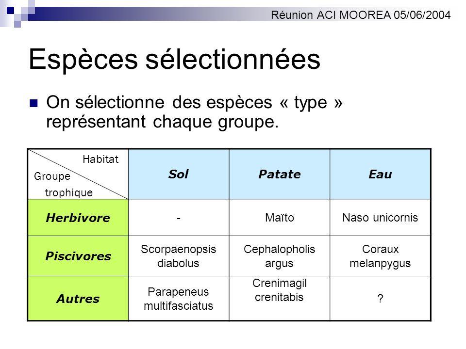 Espèces sélectionnées On sélectionne des espèces « type » représentant chaque groupe. Habitat Groupe trophique SolPatateEau Herbivore -MaïtoNaso unico