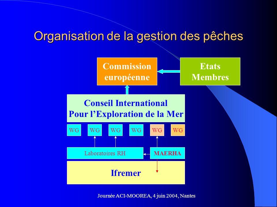 Journée ACI-MOOREA, 4 juin 2004, Nantes Organisation de la gestion des pêches Commission européenne Etats Membres Conseil International Pour lExploration de la Mer WG Ifremer Laboratoires RHMAERHA