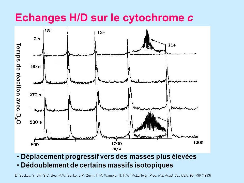 Echanges H/D sur le cytochrome c Temps de réaction avec D 2 O Déplacement progressif vers des masses plus élevées Dédoublement de certains massifs isotopiques D.