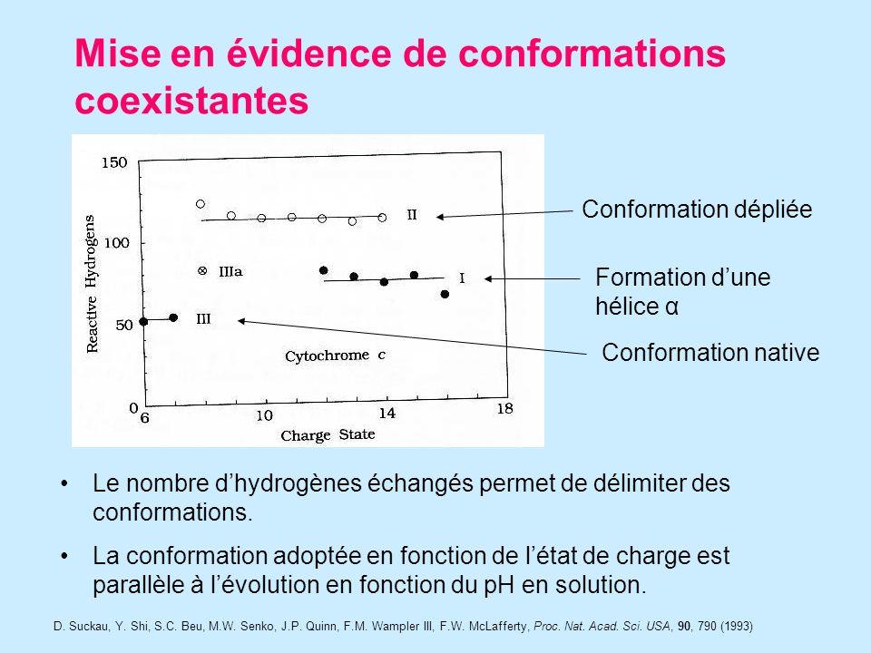 Mise en évidence de conformations coexistantes D. Suckau, Y.