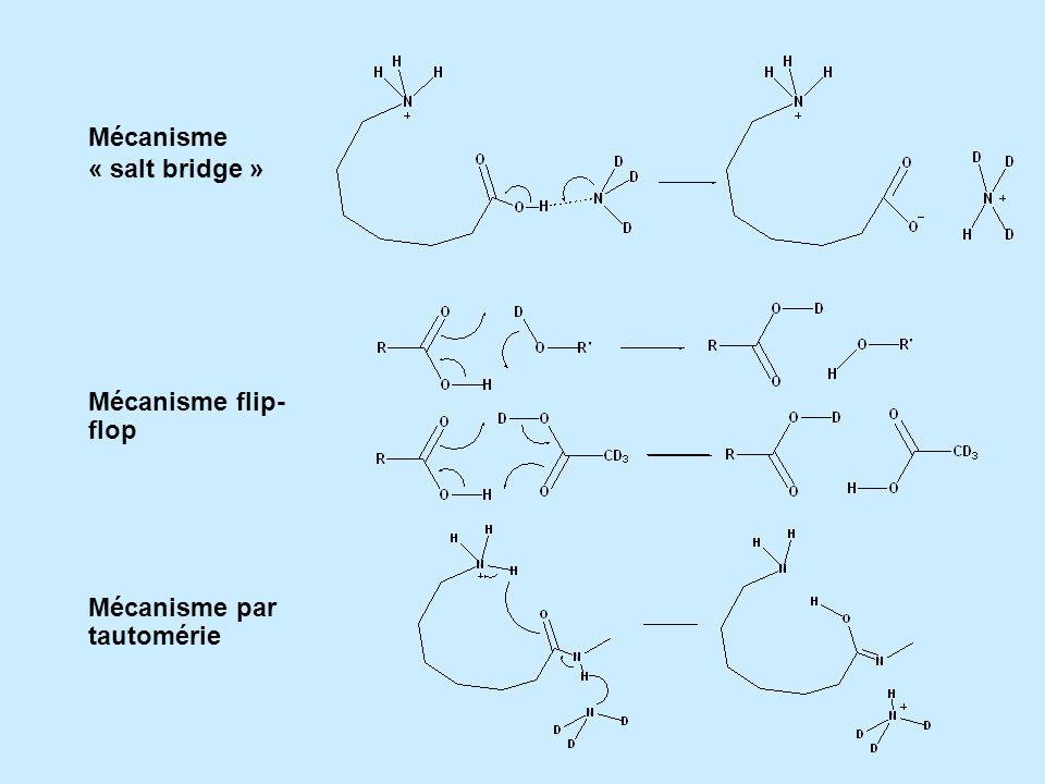 Mécanisme « salt bridge » Mécanisme flip- flop Mécanisme par tautomérie