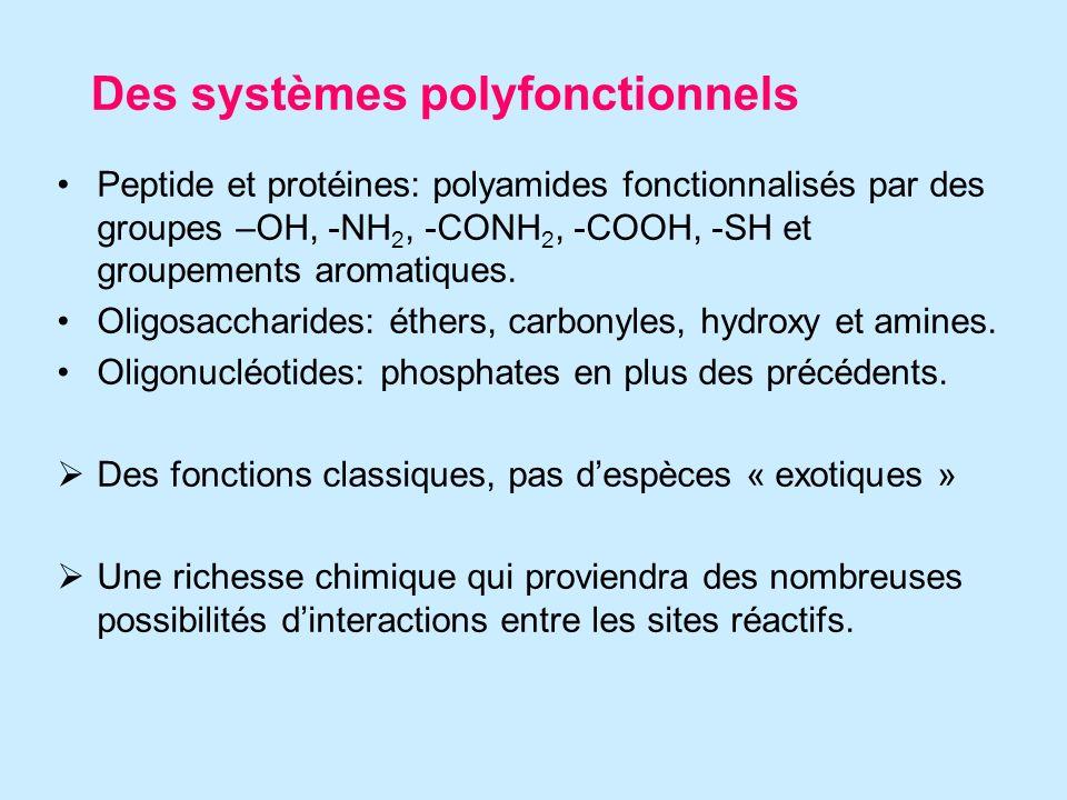 Des systèmes polyfonctionnels Peptide et protéines: polyamides fonctionnalisés par des groupes –OH, -NH 2, -CONH 2, -COOH, -SH et groupements aromatiques.