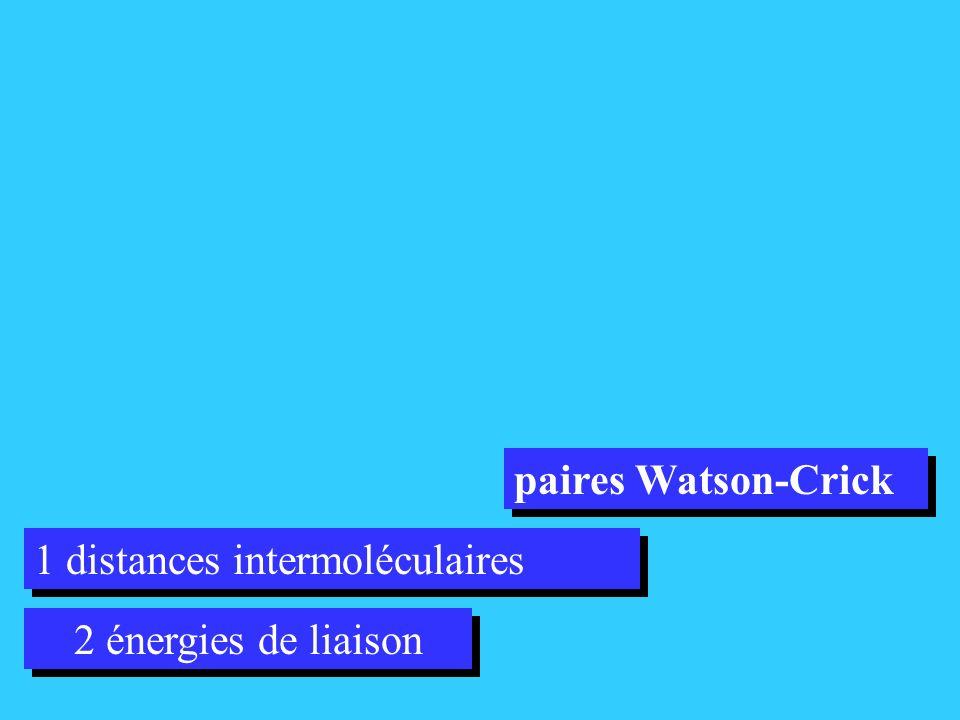 2 énergies de liaison 1 distances intermoléculaires paires Watson-Crick