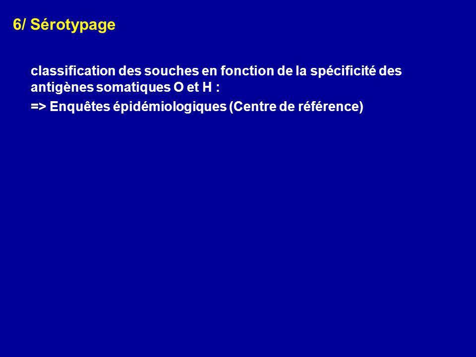 6/ Sérotypage classification des souches en fonction de la spécificité des antigènes somatiques O et H : => Enquêtes épidémiologiques (Centre de référ
