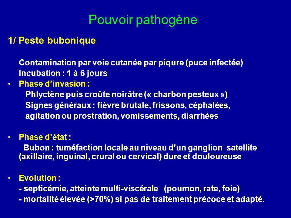 Pouvoir pathogène 1/ Peste bubonique Contamination par voie cutanée par piqure (puce infectée) Incubation : 1 à 6 jours Phase dinvasion : Phlyctène pu