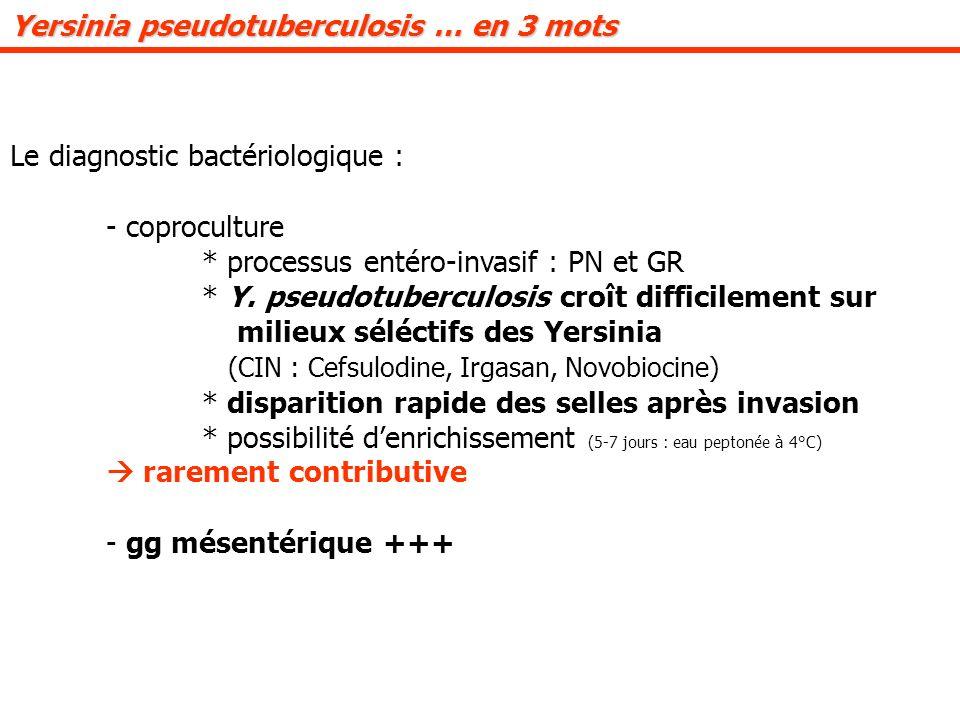 Le diagnostic bactériologique : - coproculture * processus entéro-invasif : PN et GR * Y.