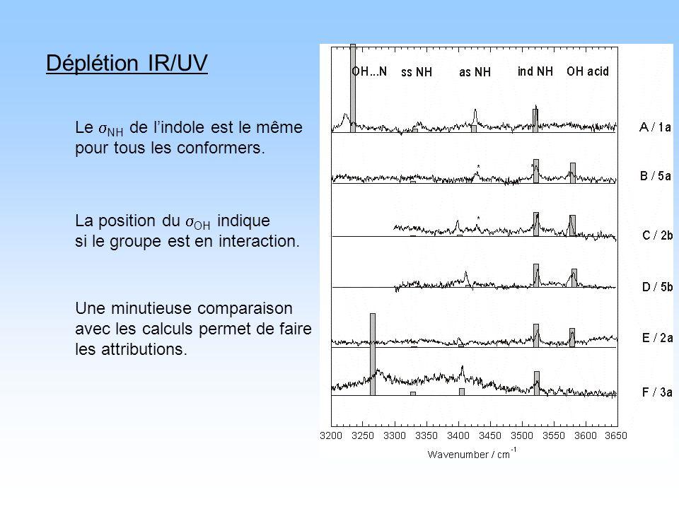 Déplétion IR/UV La position du OH indique si le groupe est en interaction. Le NH de lindole est le même pour tous les conformers. Une minutieuse compa
