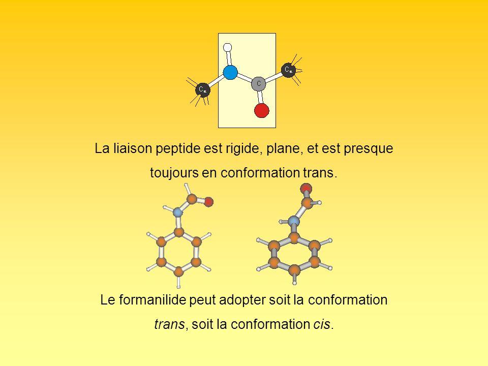 La liaison peptide est rigide, plane, et est presque toujours en conformation trans. Le formanilide peut adopter soit la conformation trans, soit la c
