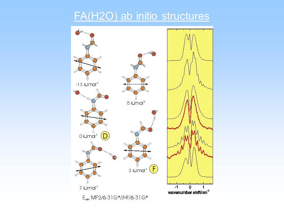 FA(H2O) ab initio structures