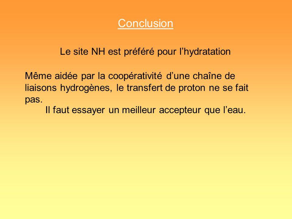 Conclusion Le site NH est préféré pour lhydratation Même aidée par la coopérativité dune chaîne de liaisons hydrogènes, le transfert de proton ne se f