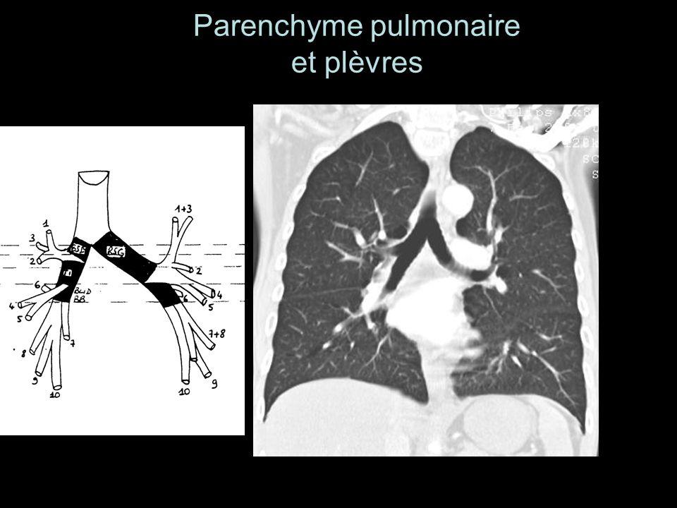 Parenchyme pulmonaire et plèvres