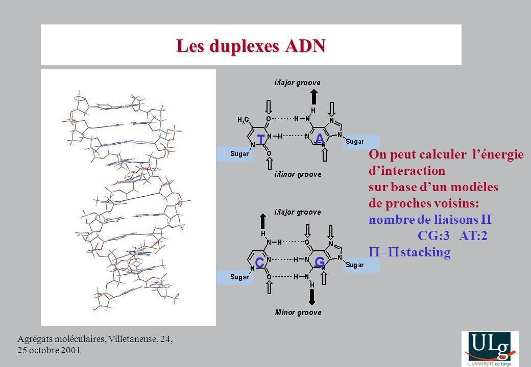 Agrégats moléculaires, Villetaneuse, 24, 25 octobre 2001 Les duplexes ADN T A C G On peut calculer lénergie dinteraction sur base dun modèles de proch
