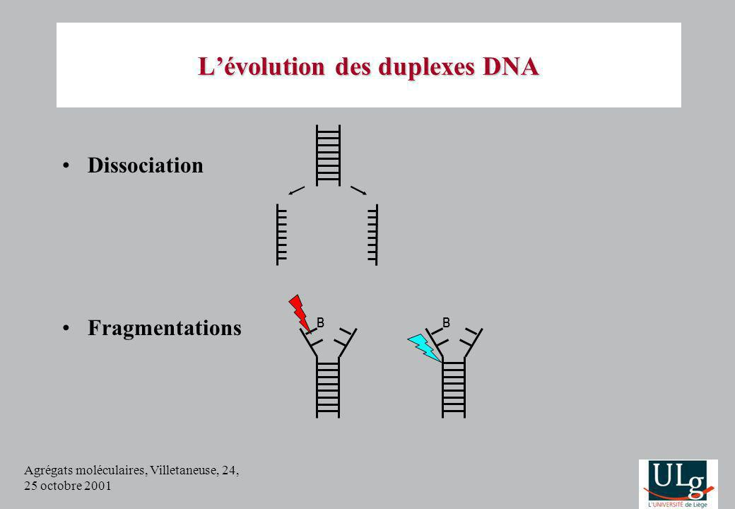 Agrégats moléculaires, Villetaneuse, 24, 25 octobre 2001 Lévolution des duplexes DNA Dissociation Fragmentations B B