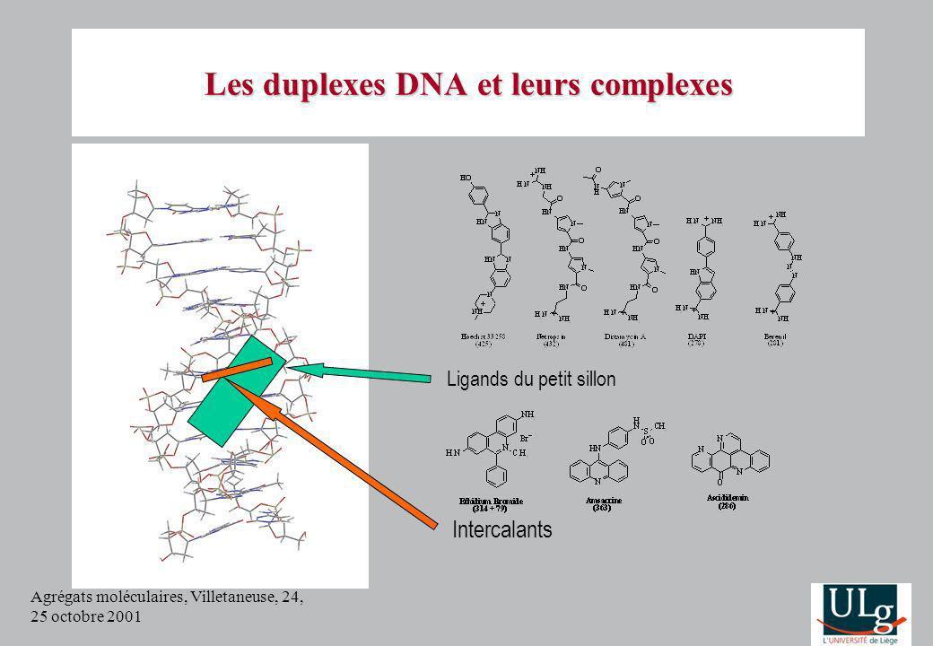 Agrégats moléculaires, Villetaneuse, 24, 25 octobre 2001 Les duplexes DNA et leurs complexes Ligands du petit sillon Intercalants