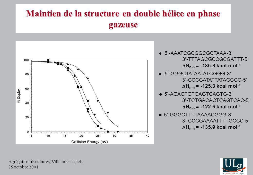 Agrégats moléculaires, Villetaneuse, 24, 25 octobre 2001 Maintien de la structure en double hélice en phase gazeuse 5-AAATCGCGGCGCTAAA-3 3-TTTAGCGCCGC
