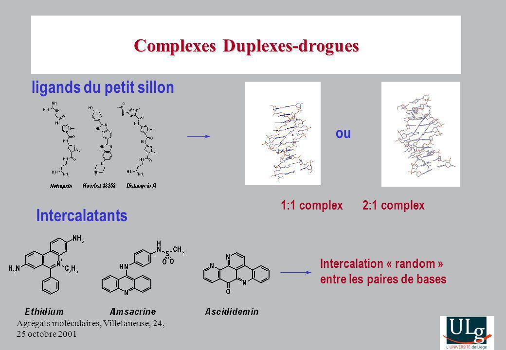 Agrégats moléculaires, Villetaneuse, 24, 25 octobre 2001 Minor groove binders Complexes Duplexes-drogues ligands du petit sillon 1:1 complex 2:1 compl