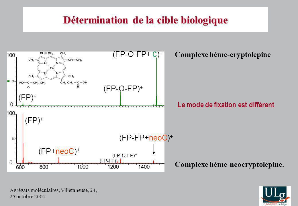 Agrégats moléculaires, Villetaneuse, 24, 25 octobre 2001 Détermination de la cible biologique (FP+neoC) + (FP) + (FP-O-FP) + (FP-O-FP+ C ) + (FP-FP+ne