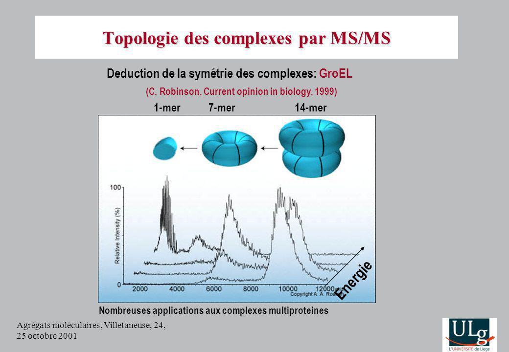 Agrégats moléculaires, Villetaneuse, 24, 25 octobre 2001 Energie 1-mer7-mer14-mer Nombreuses applications aux complexes multiproteines Deduction de la