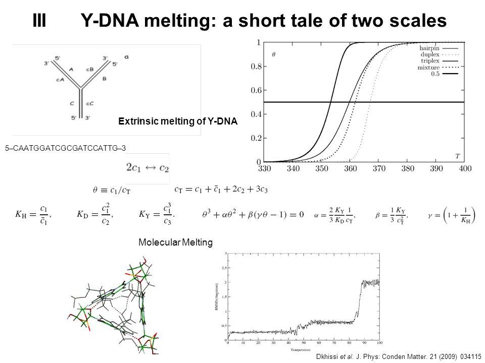 IIIY-DNA melting: a short tale of two scales Molecular Melting 5–CAATGGATCGCGATCCATTG–3 Extrinsic melting of Y-DNA Dkhissi et al. J. Phys: Conden Matt