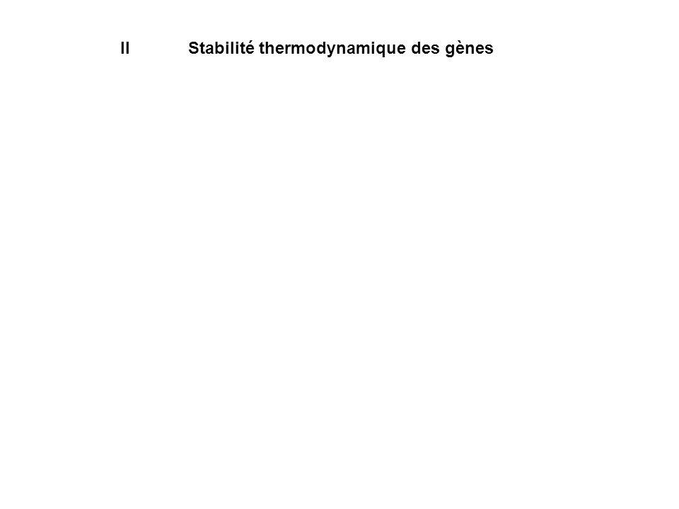 IIStabilité thermodynamique des gènes