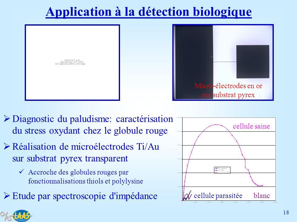 18 Application à la détection biologique Diagnostic du paludisme: caractérisation du stress oxydant chez le globule rouge Réalisation de microélectrod