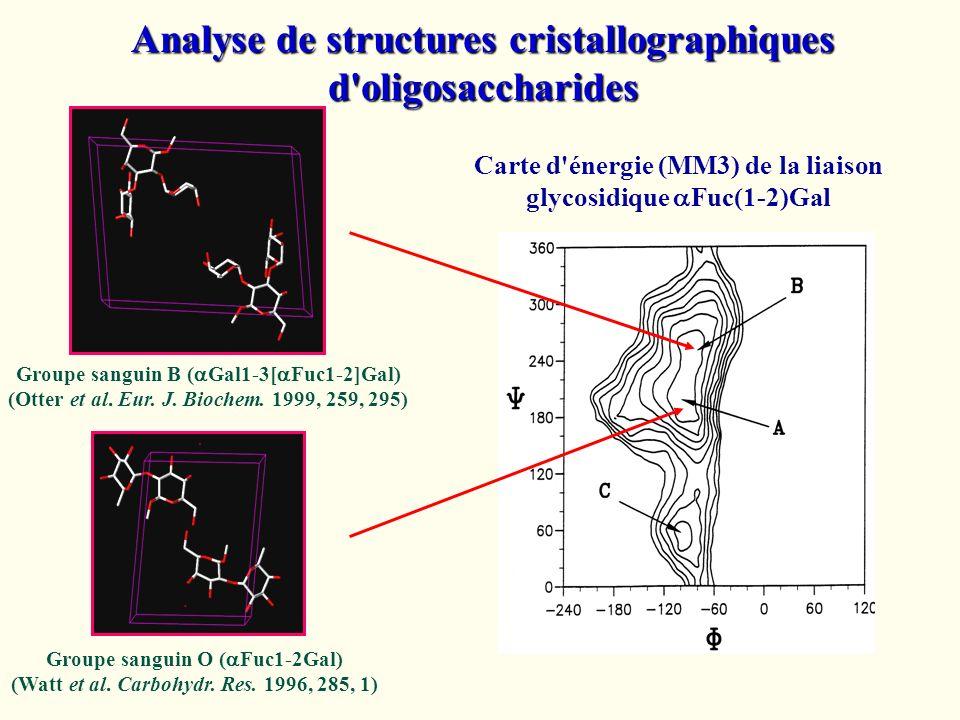 Analyse de structures cristallographiques d'oligosaccharides Groupe sanguin B ( Gal1-3[ Fuc1-2]Gal) (Otter et al. Eur. J. Biochem. 1999, 259, 295) Gro