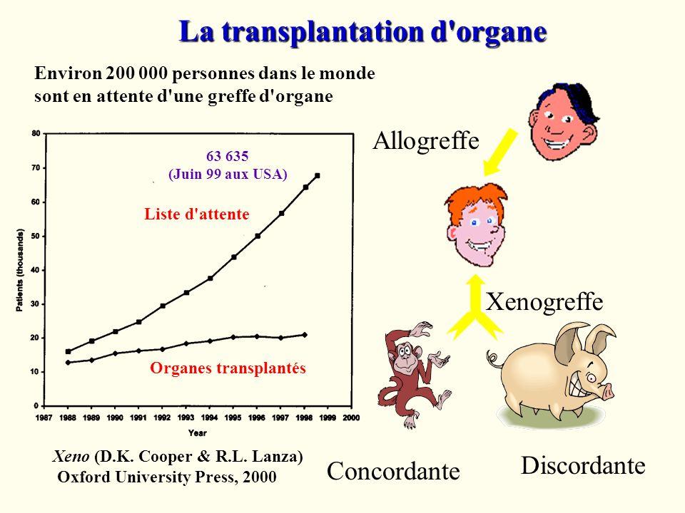 Allogreffe Xenogreffe Discordante Concordante La transplantation d'organe Xeno (D.K. Cooper & R.L. Lanza) Oxford University Press, 2000 Liste d'attent