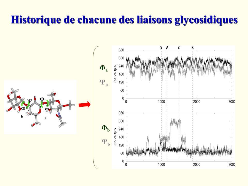 b b a a a a b b Historique de chacune des liaisons glycosidiques