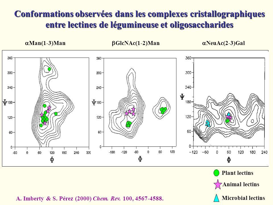 Man(1-3)Man GlcNAc(1-2)Man NeuAc(2-3)Gal Plant lectins Animal lectins Microbial lectins Conformations observées dans les complexes cristallographiques