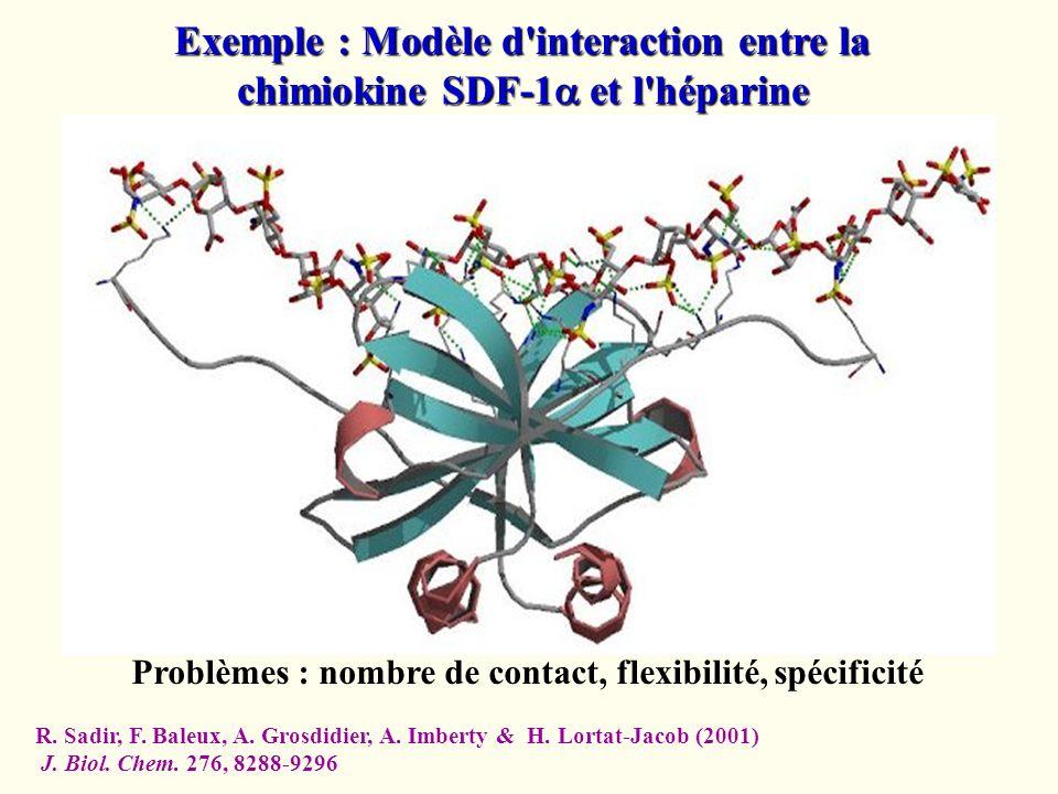 Exemple : Modèle d'interaction entre la chimiokine SDF-1 et l'héparine Problèmes : nombre de contact, flexibilité, spécificité R. Sadir, F. Baleux, A.